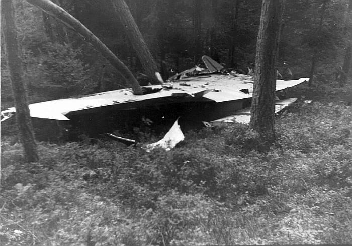 Eine Tragfläche der abgestürzten Lockheed (Foto: W. Andrej)