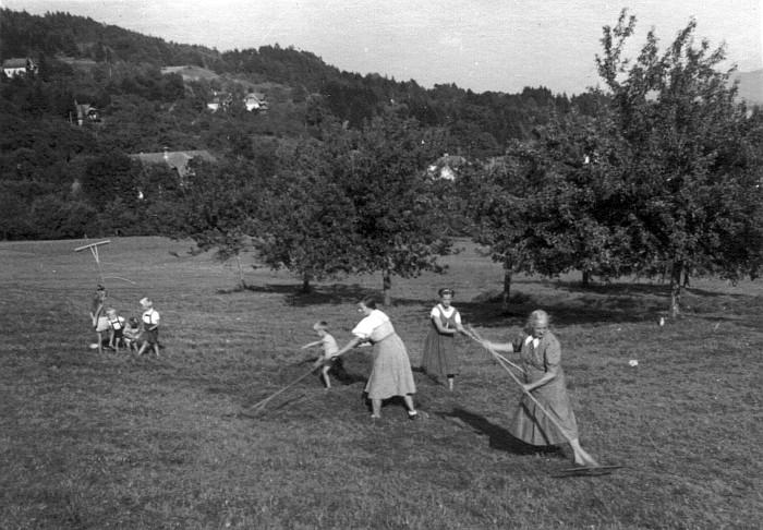 Ernteeinsatz Kraschonig-Wiese1943